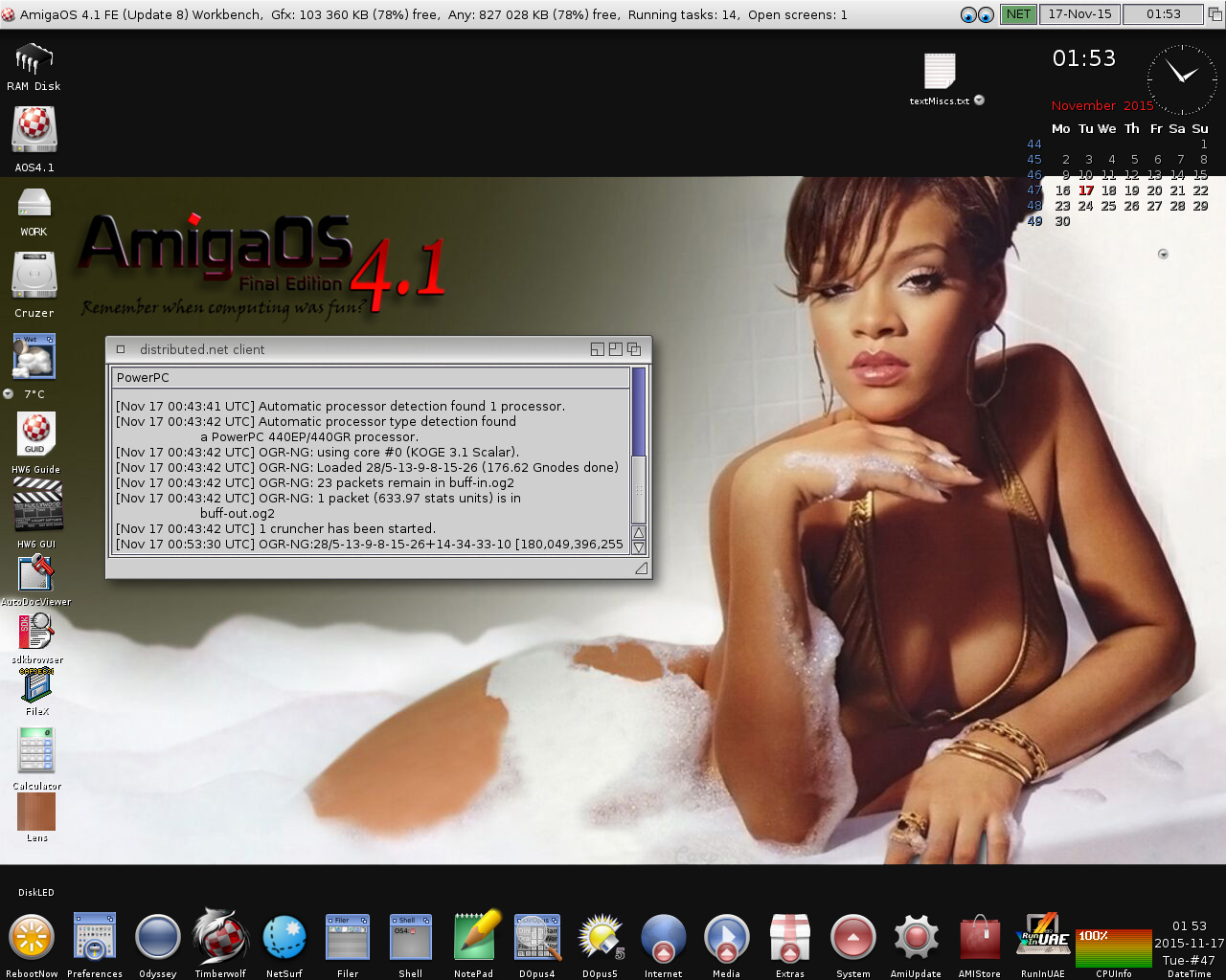 AmigaOS 4.1 FE-Rihanna,distributed.net client
